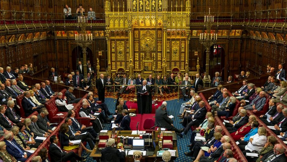 Image result for the house of lords too many members